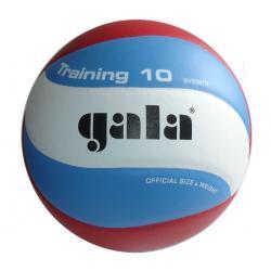 Gala Volejbalová lopta Training 10